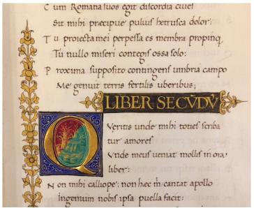 Codex Oxford