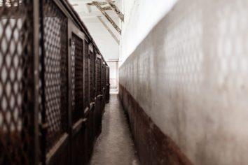 Cages_a_Poules_1-768x512